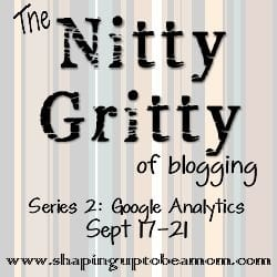 Nitty Gritty: Google Analytics Day Five