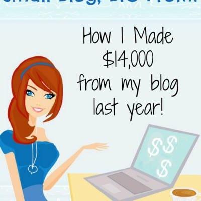 Small Blog, Big Profit