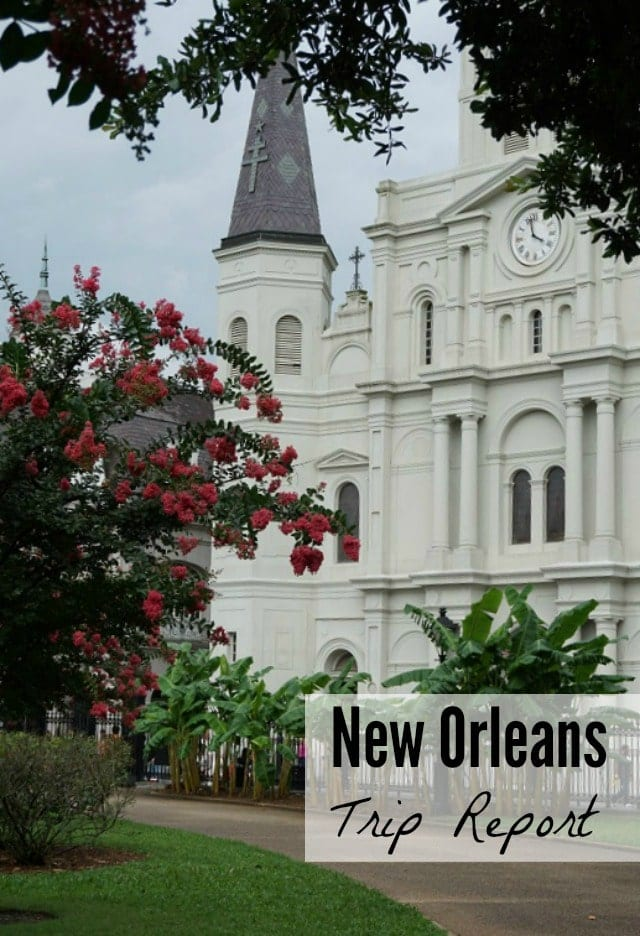 My New Orleans trip report: iRetreat, second line parade, swamp tour, and more!