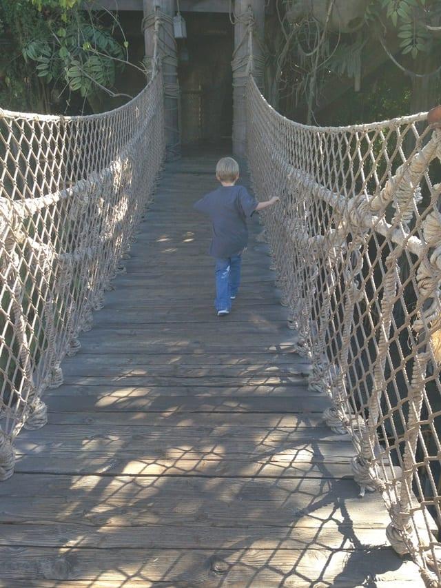 tarzans-bridge