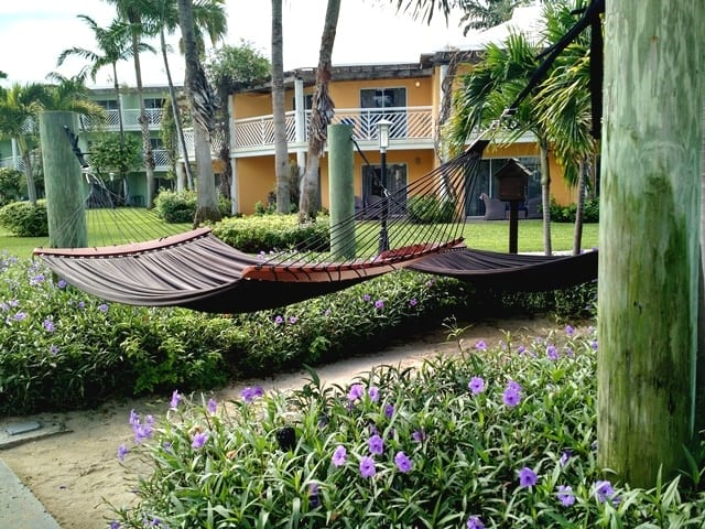 double-hammocks