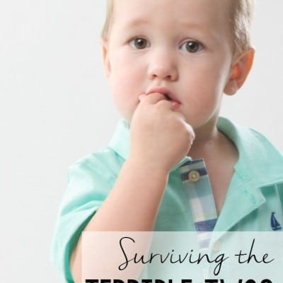 Surviving the Terrible Twos